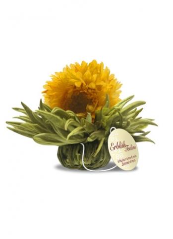 Kvetoucí čaj - Tealini - Vanilkový rozkvět