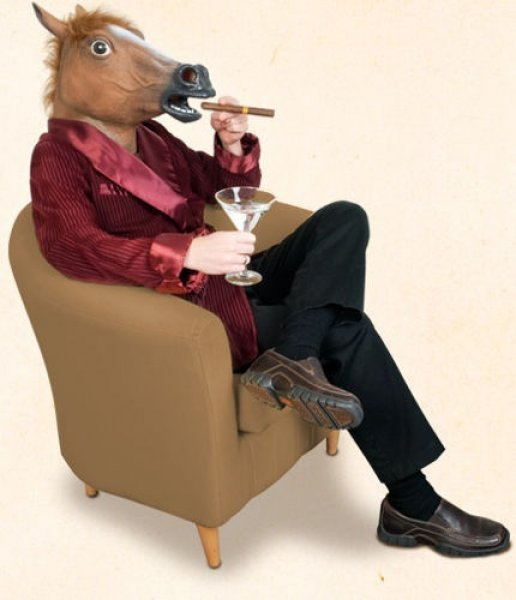 maska koně hlava