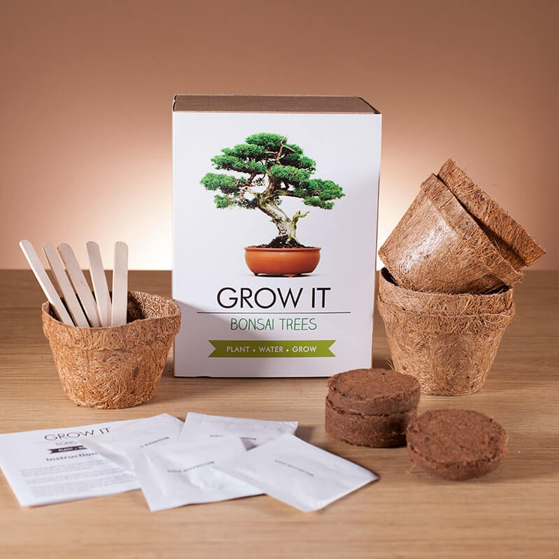 Grow it! - Bonsai