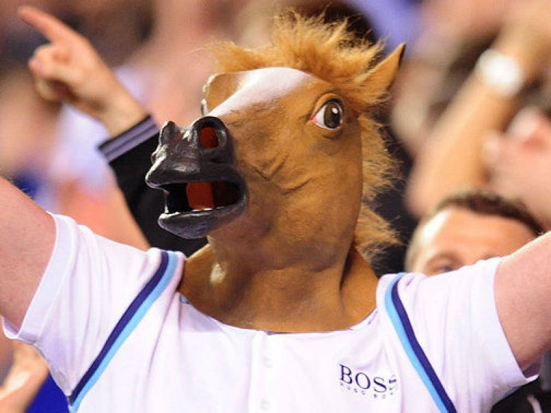 maska hlava koně