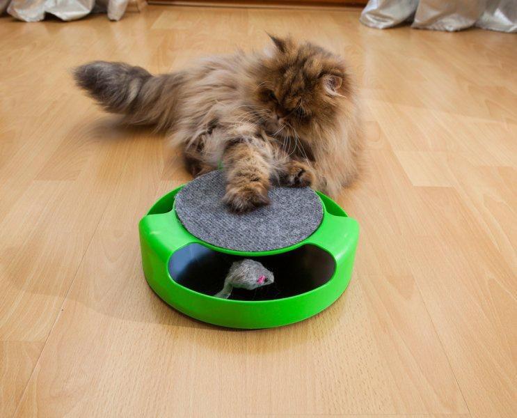 Hračka pro kočky - Chyť myšku